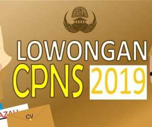 2.082 Pelamar CPNS BKN Lolos Seleksi Administrasi