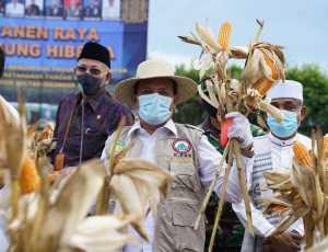 Bupati Aceh Besar Hadiri Panen Raya Jagung Hibrida di Lanud Iskandar Muda.