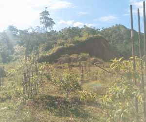 Masyarakat Samadua Tolak Rencana Pemindahan Lokasi Gedung STAI Tapaktuan