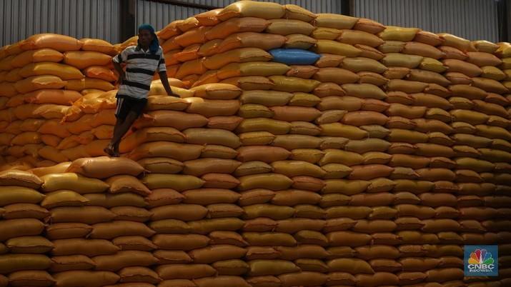 Mantap! Bulog akan Ekspor Beras 100 Ton ke Arab Saudi